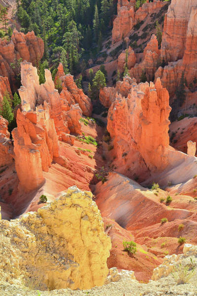 Photograph - Hoodoo Gulley by Ray Mathis