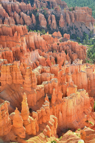 Photograph - Hoodoo Skyscrapers by Ray Mathis