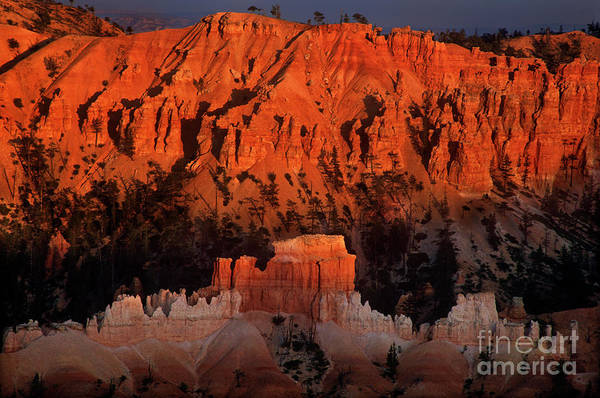 Photograph - Hoodoos At Sunset Bryce Canyon National Park Utah by Dave Welling