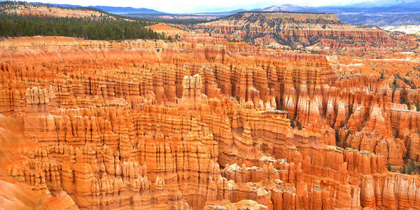 Photograph - Hoodoos Of Bryce Canyon by Gordon Elwell