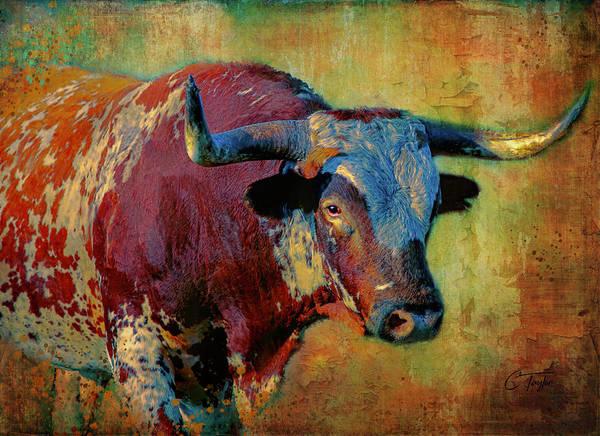 Longhorn Digital Art - Hook 'em 2 by Colleen Taylor