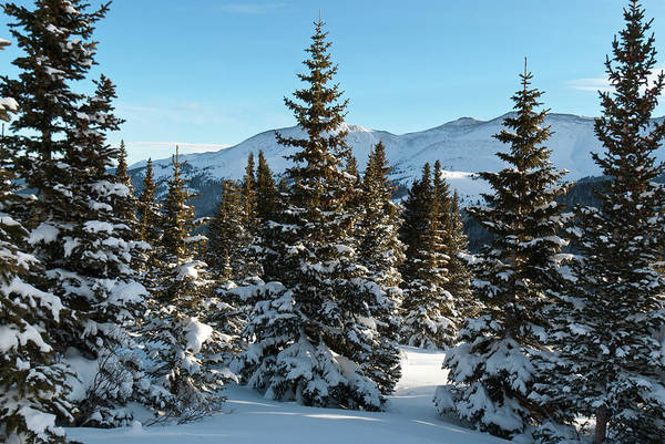 Photograph - Hoosier Pass Snowy Winter Landscape by Cascade Colors