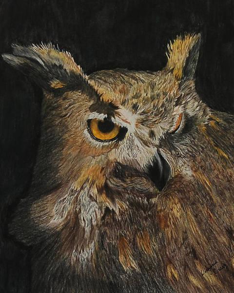 Hooter Drawing - Hooter by Virginia Craig