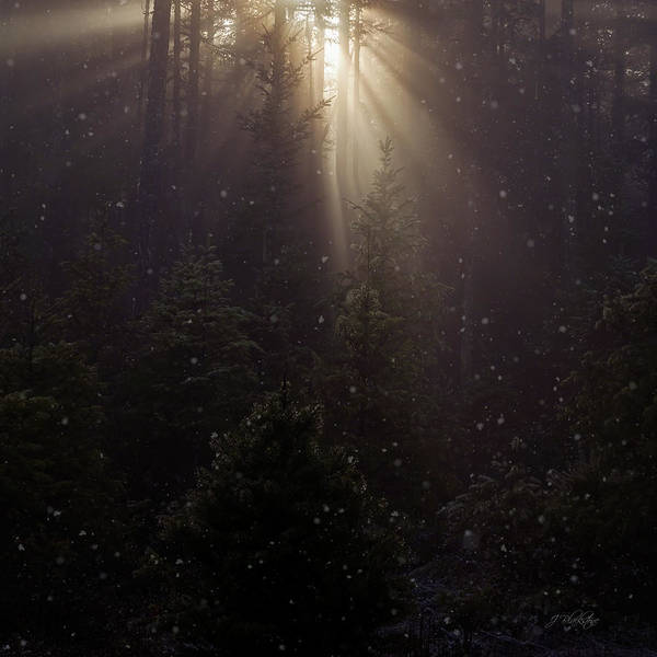 Photograph - Hope And Faith - Winter Art by Jordan Blackstone