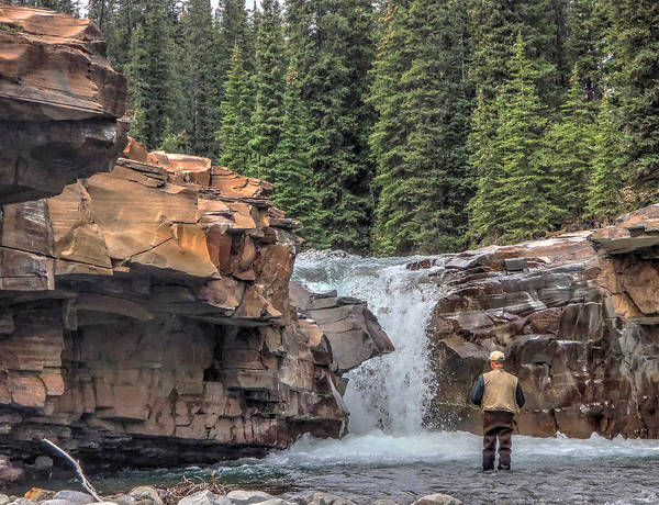 Photograph - Hope Under The Falls by Philip Rispin