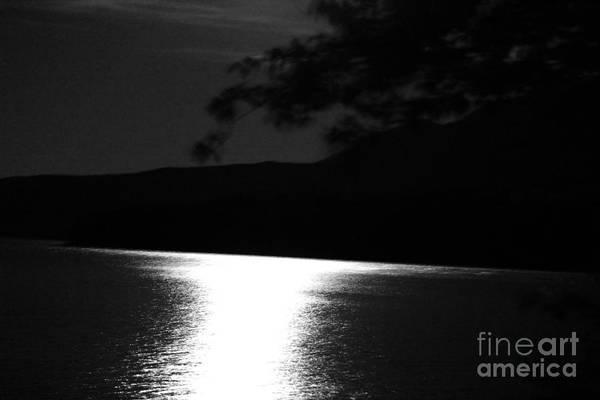 Photograph - Hopeless Romantic by Ann E Robson