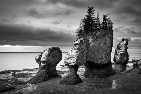Wall Art - Photograph - Hopewell Rocks by Patrick Downey
