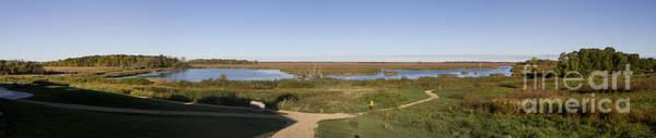 Photograph - Horicon Marsh Wildlife Refuge by Ricky L Jones