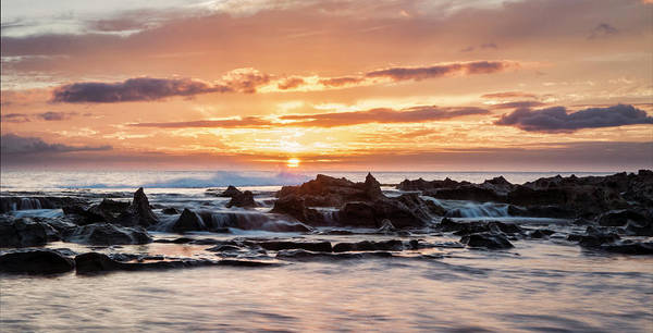 Photograph - Horizon In Paradise by Heather Applegate