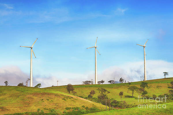 Srilanka Wall Art - Photograph - Horizontal Axis Wind Turbines by MotHaiBaPhoto Prints