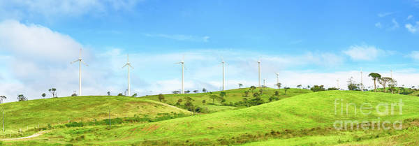Srilanka Wall Art - Photograph - Horizontal Axis Wind Turbines. Panorama by MotHaiBaPhoto Prints