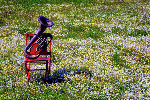 Wall Art - Photograph - Horn In Spring Field by Garry Gay