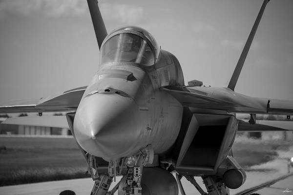 Wall Art - Photograph - Hornet In Blackand White by Philip Rispin