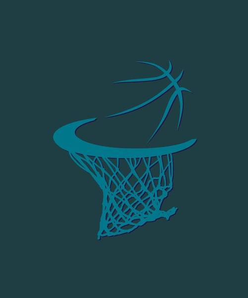 Wall Art - Photograph - Hornets Basketball Hoop by Joe Hamilton