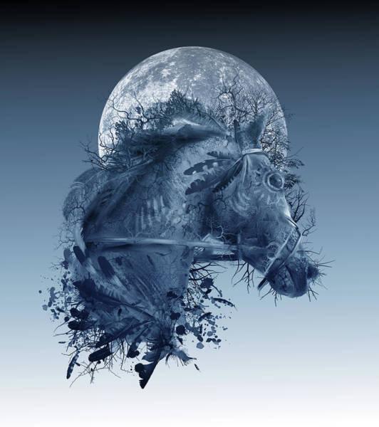Oak Digital Art - Horse 2 by Bekim Art