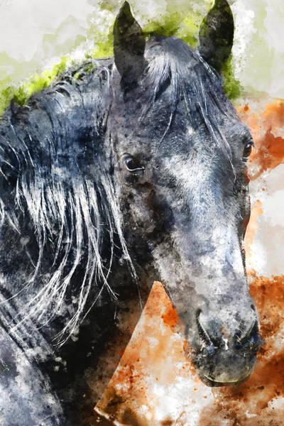 Wall Art - Mixed Media - Horse 2 by Kevin O'Hare