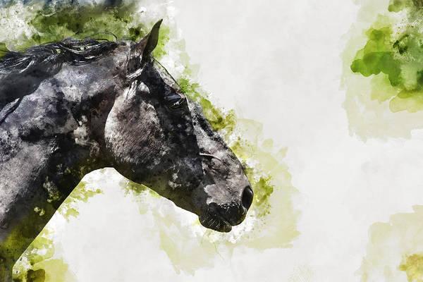 Wall Art - Mixed Media - Horse 3 by Kevin O'Hare
