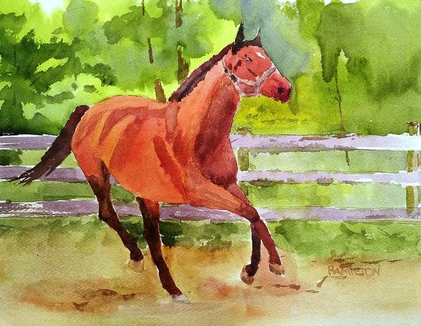 Painting - Horse #3 by Larry Hamilton