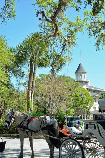 Photograph - Horse And Carriage At Jekyll Island Club Hotel by Bruce Gourley