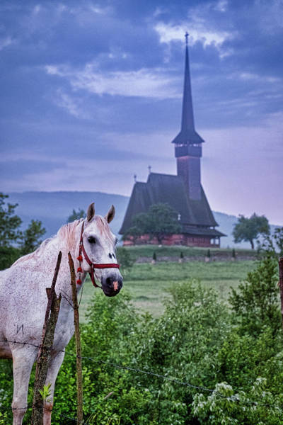 Photograph - Horse And Monastery - Romania by Stuart Litoff