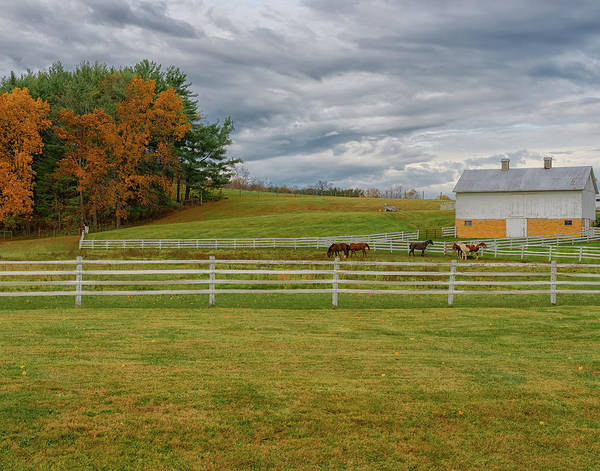 Wall Art - Photograph - Horse Barn In Ohio  by Richard Kopchock