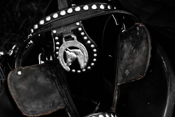 Wall Art - Photograph - Horse Blinker Style by Toni Hopper