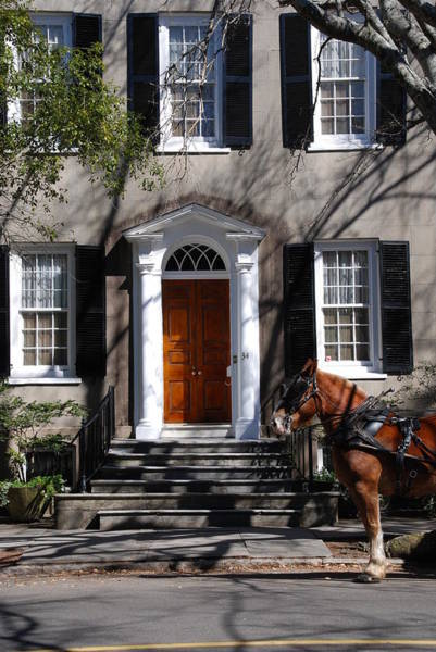 Wall Art - Photograph - Horse Carriage In Charleston by Susanne Van Hulst