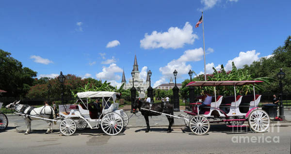 Photograph - Horse Carriages by Steven Spak