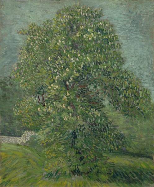 Painting - Horse Chestnut Tree In Blossom Paris May 1887 Vincent Van Gogh 1853  1890 by Artistic Panda