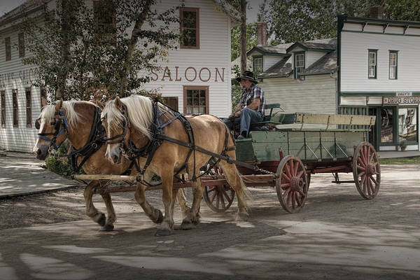 Photograph - Horse Drawn Wagon At The Fort Edmonton Museum by Randall Nyhof