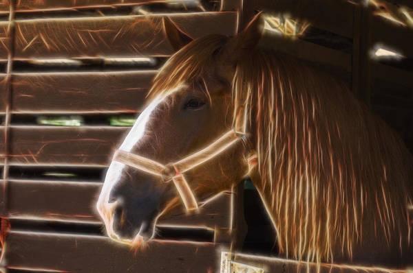 Digital Art - Horse Electric by Chris Flees