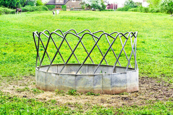 Trough Wall Art - Photograph - Horse Feeding Trough by Tom Gowanlock