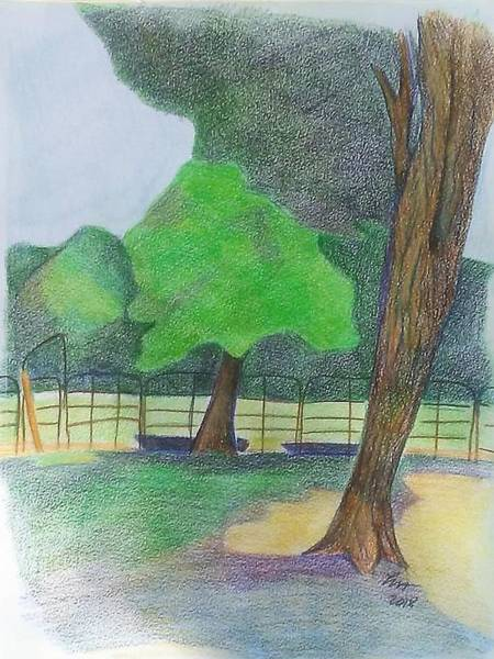 Drawing - Horse Field by Loretta Nash