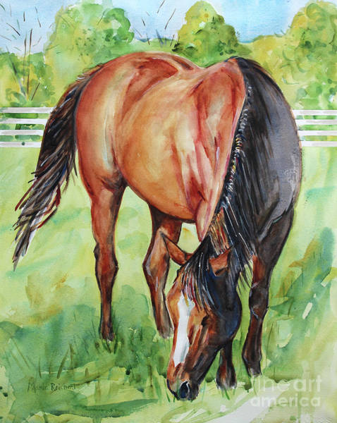 Aqha Painting - Horse Grazing by Maria's Watercolor
