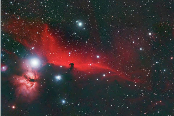 Photograph - Horse Head And Flame Nebula by Dale J Martin