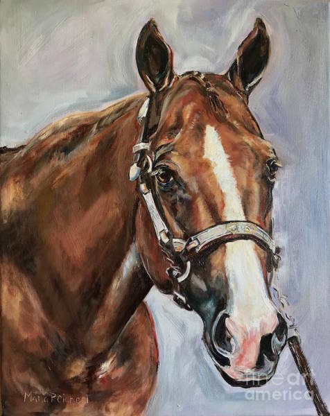 Aqha Painting - Horse Head Portrait by Maria's Watercolor