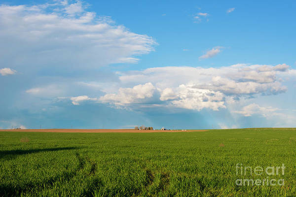 Wall Art - Photograph - Horse Heaven Storm by Mike Dawson