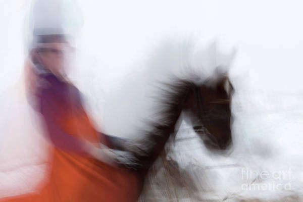 Photograph - Horse Hunt #8153 by Andrey Godyaykin