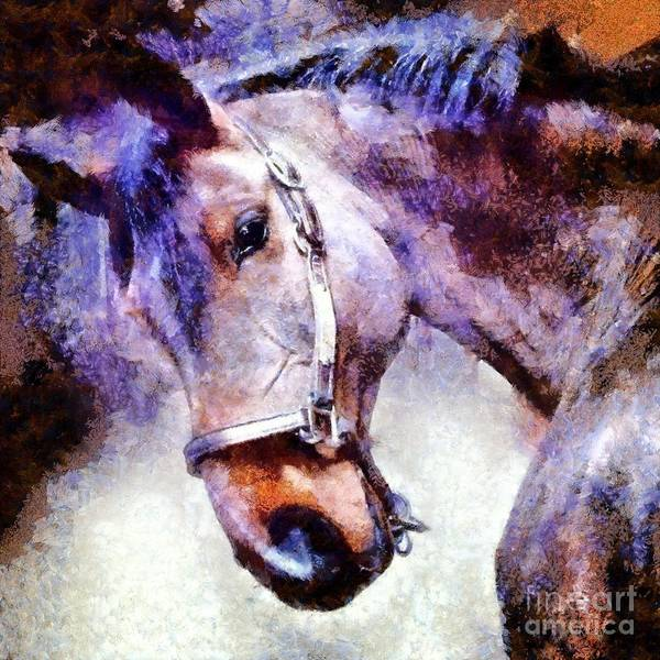 Mounted Digital Art - Horse I Will Follow You by Janine Riley