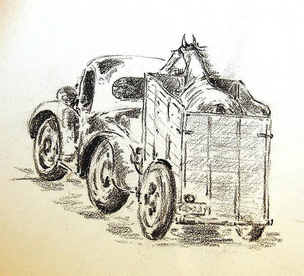 Trailer Drawing - Horse In Cart by Smart Healthy Life
