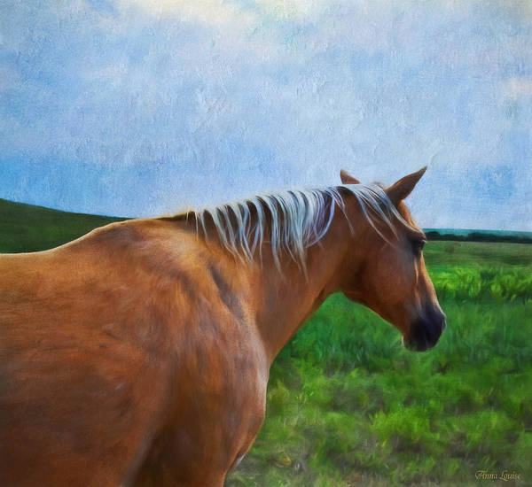 Photograph - Horse In Storm by Anna Louise