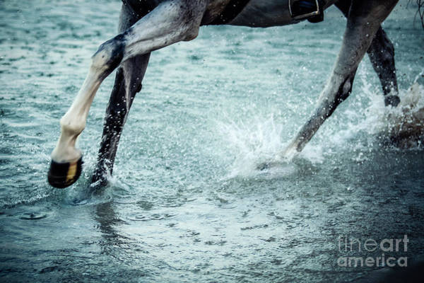 Photograph - Horse Legs Running On The Water by Dimitar Hristov