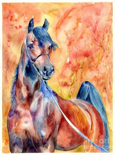Japan Painting - Horse On The Orange Background by Suzann's Art