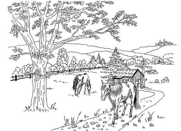 Farmer Drawing - Horses On The Ranch Ink Drawing IIi by Irina Sztukowski