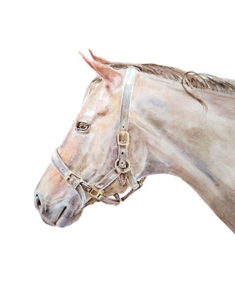 Horse Portrait I Art Print