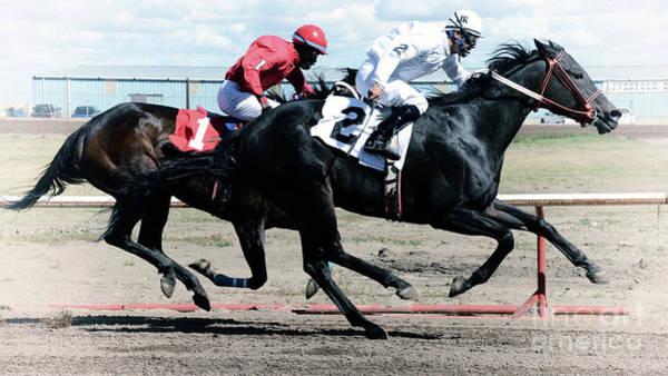 Lethbridge Photograph - Horse Power 12 by Bob Christopher