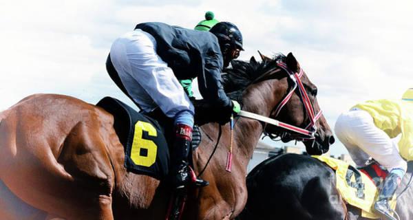 Lethbridge Photograph - Horse Power 14 by Bob Christopher