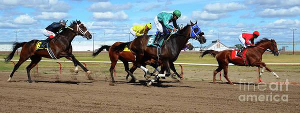 Jocky Photograph - Horse Power 17 by Bob Christopher