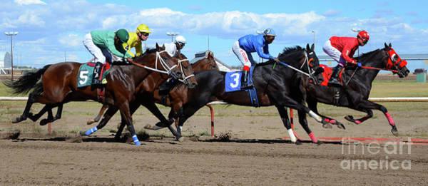 Lethbridge Photograph - Horse Power 2 by Bob Christopher