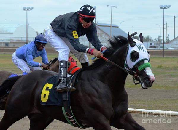 Lethbridge Photograph - Horse Power 4 by Bob Christopher